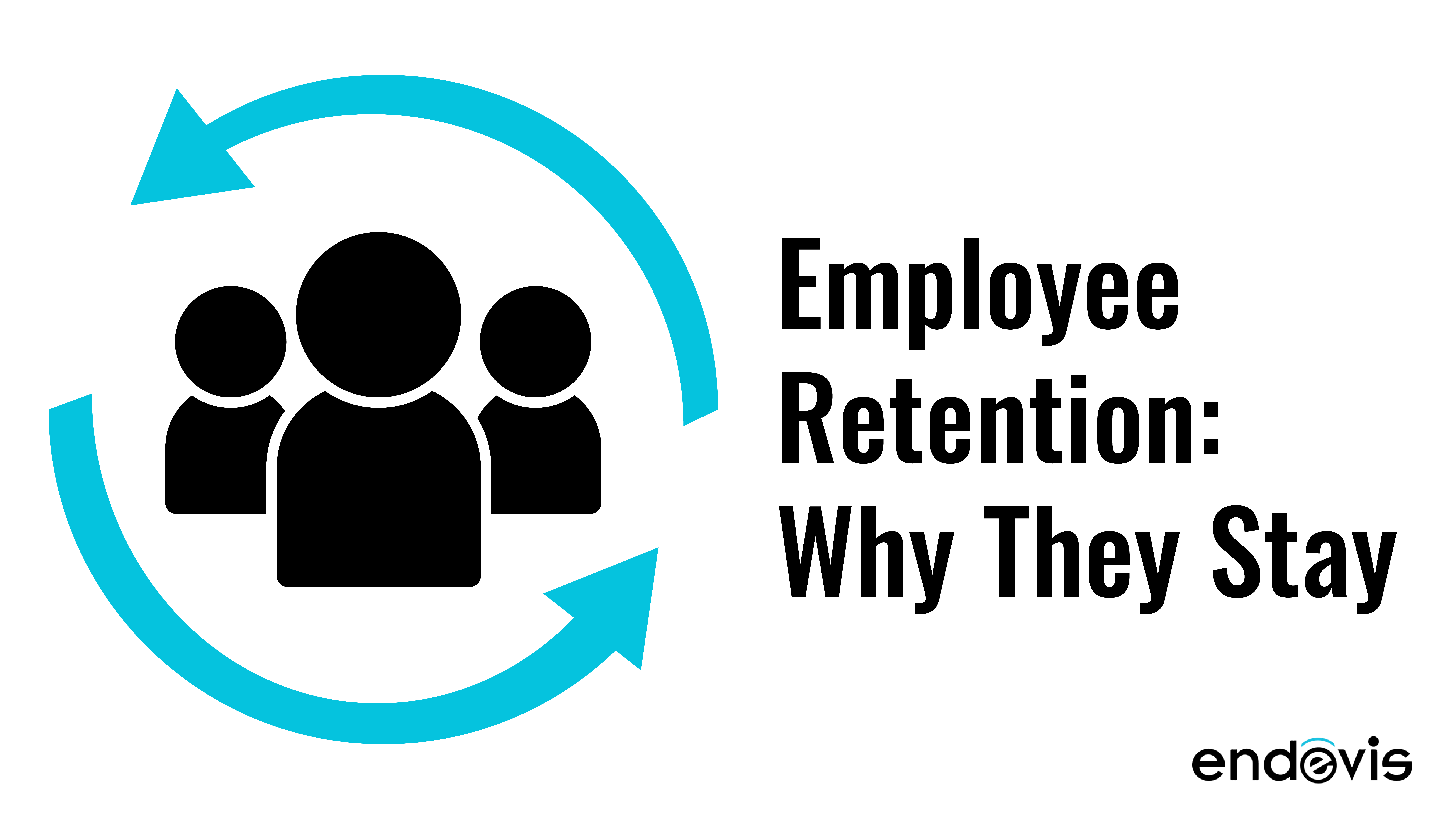 Employee Retention: Why They Stay